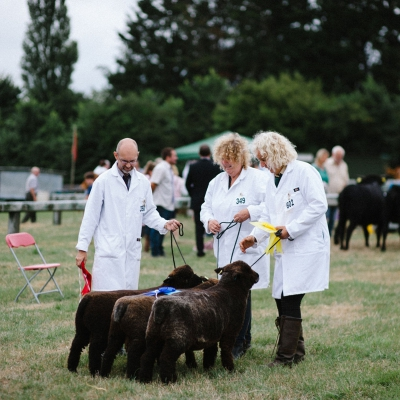 honiton-agricultural-show